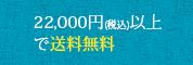 22,000円以上(税込)で送料無料!